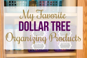 My Favorite Dollar Tree Organizing Products