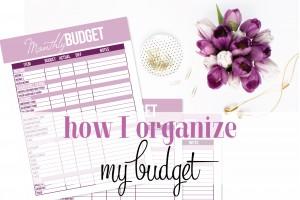 How I Organize My Budget