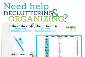 Need Help Decluttering and Organizing?