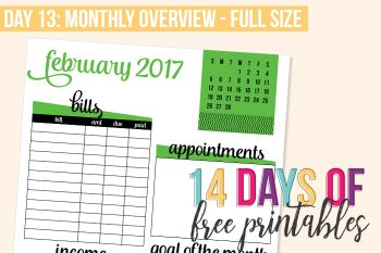 Day 13: Monthly Overview