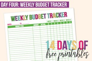 Day 4: Weekly Budget Tracker