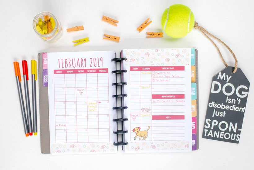 Free planner printables every month! We're sharing why a monthly calendar so important to your daily life. Check out our monthly calendar layout and download yours today.