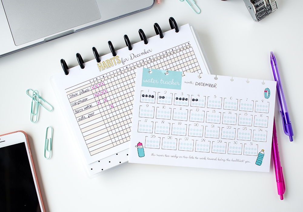 Get an inside look at Shaina's life planner - plan with me style. She'll take you inside her Sweet Life Planner to show you how she uses her discbound planner and bullet journaling together.