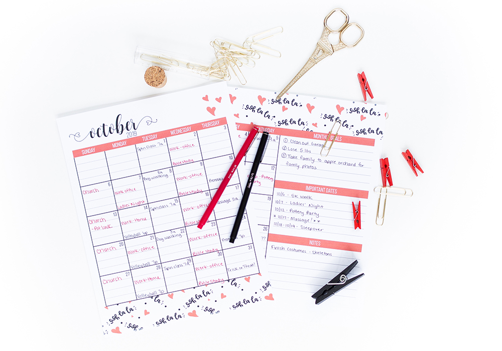 Does the thought of drafting a month long meal plan sound daunting? We will walk you step by step through how to choose the right meals to get your meal planning out of the way for a whole month!